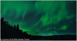 Northern-Lights-Aurora-Borealis-along-Alaska-Highway-c-Laurent-Dick-Wild-Alaska-Travel1(pp_w1060_h563)